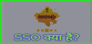 SSO Kya hai